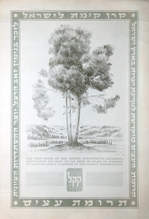 Trees for Israel certificate