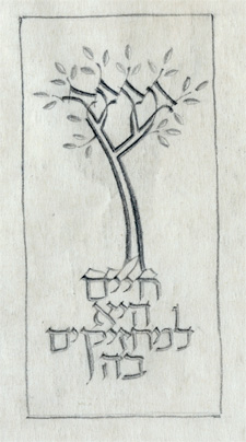 Tree of Life sketch